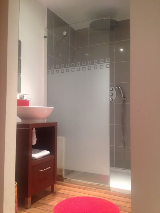 Salle d'eau avec vasque placard dans chambre 1