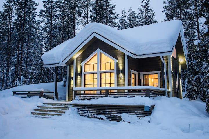 TievaNest-a cozy high standard cabin in Ylläsjärvi