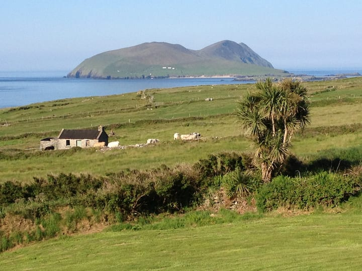 Blasket Island View, Dunquin,Dingle, Co. Kerry.