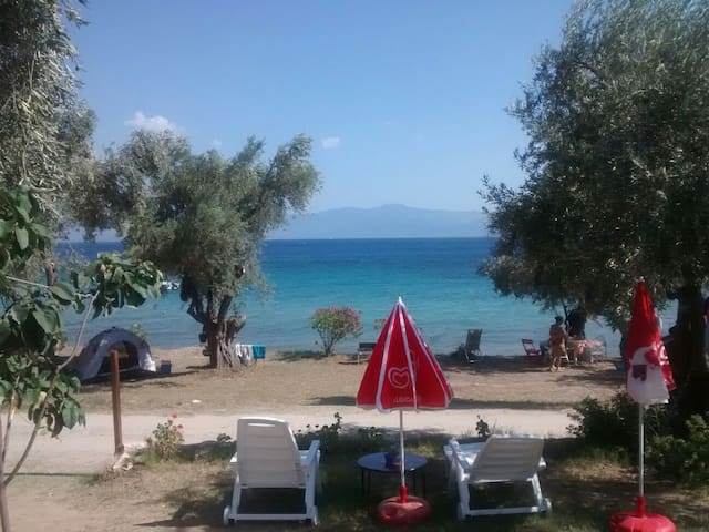 Peaceful vacation by the sea! - Agios Dimitrios - Hus
