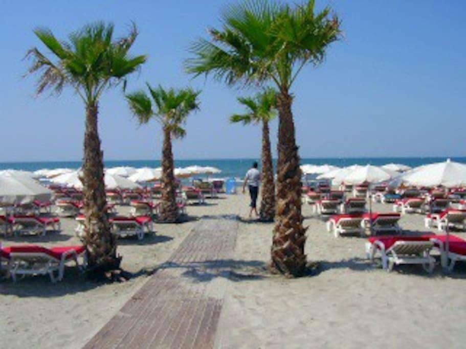 Richieulu Beach