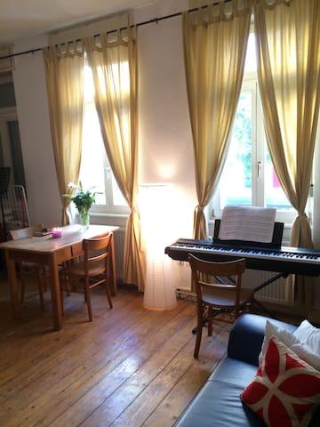 Charming Studio in Heidelberg! - Heidelberg - Daire
