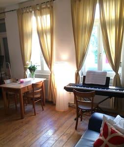 Charming Studio in Heidelberg! - Heidelberg - Appartement