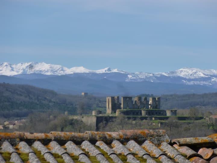 Nid douillet proche Mirepoix - vue  Pyrénées