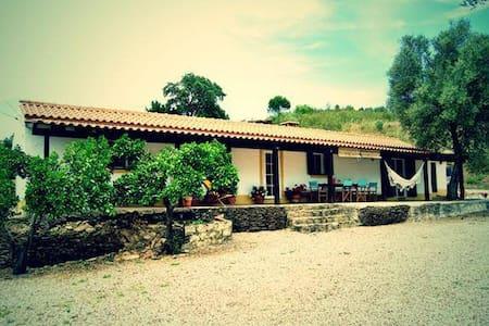 Cottage House Alentejo Coast - Vila Nova de Milfontes - 独立屋