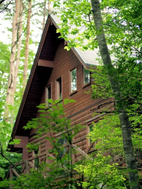 Schöne kleine Hütte im Wald in Mt.Fuji