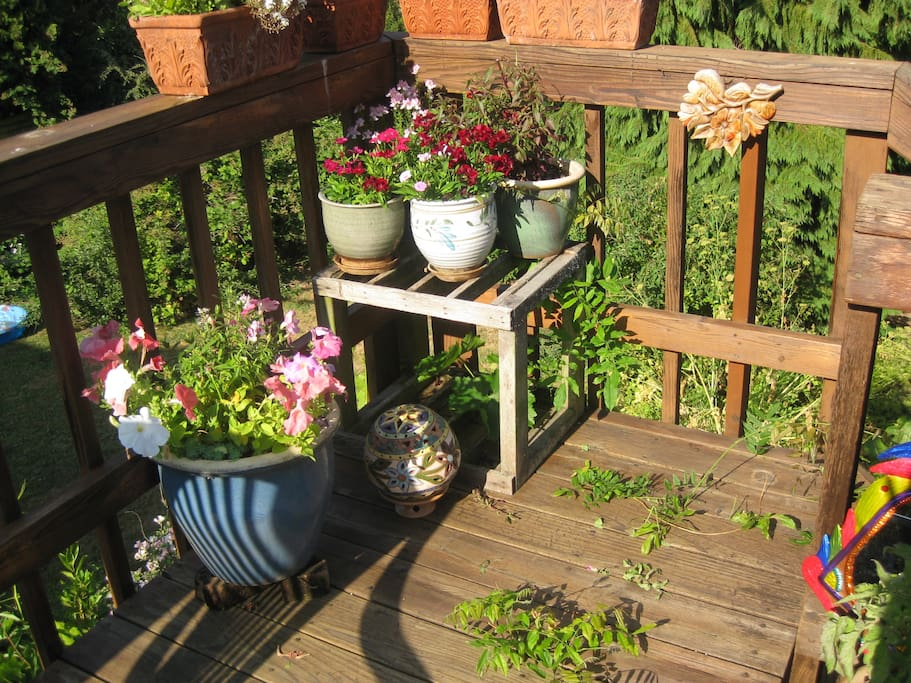 Back deck off the kitchen. There's a table, umbrella, chairs for 6. Not as many plants this year though.