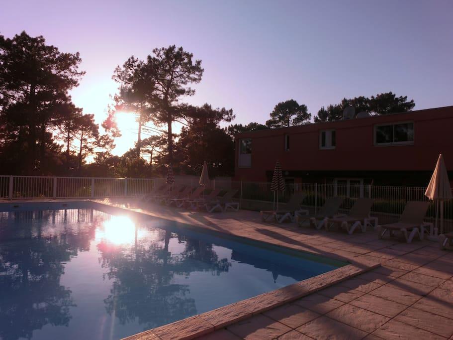 Une belle piscine