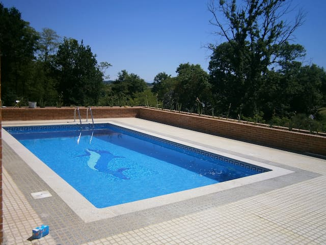 Maison NEUVE Piscine - Montfort-en-Chalosse