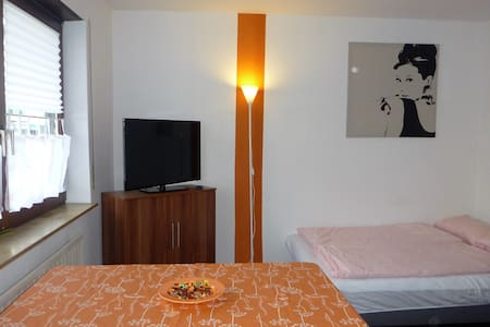 Pretty small apartment near Mannheim - Leilighet