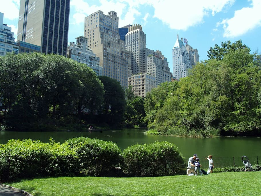 Beautiful Central Park right by my place