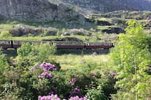 The Ffestiniog Railway passes in front of the cottage