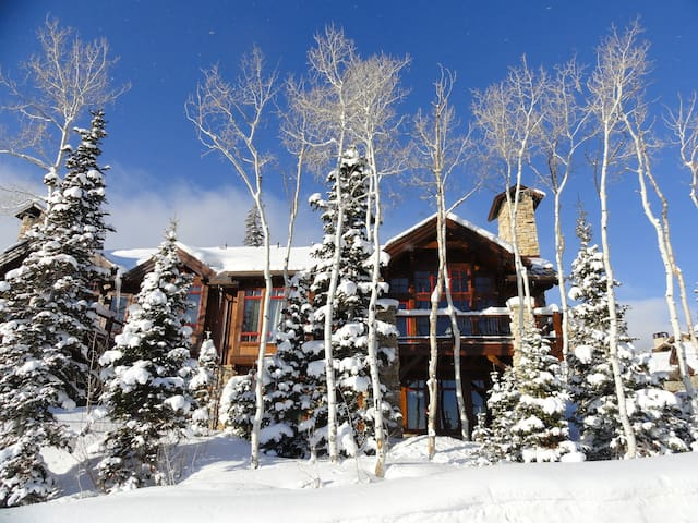 Luxury Ski-in Ski-out! Great Views! - Park City - House