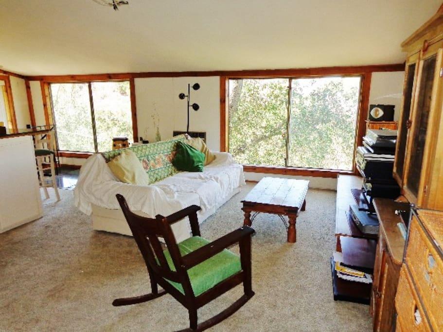 living room -big windows all around