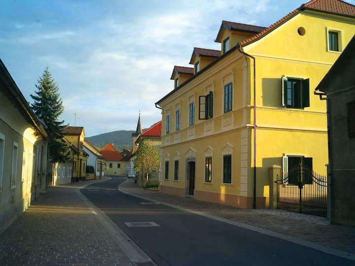 "Villa in the ""Venice of Dolenjska"""