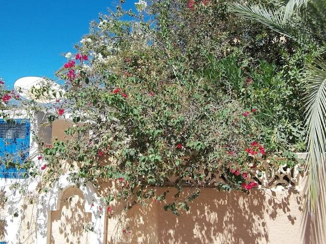 Résidence Pour Vos Vacances - Tunis, djerba,Sidi Mahrez - Casa