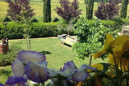 nestled in the rolling countryside  - Castiglione Del Lago - Penzion (B&B)