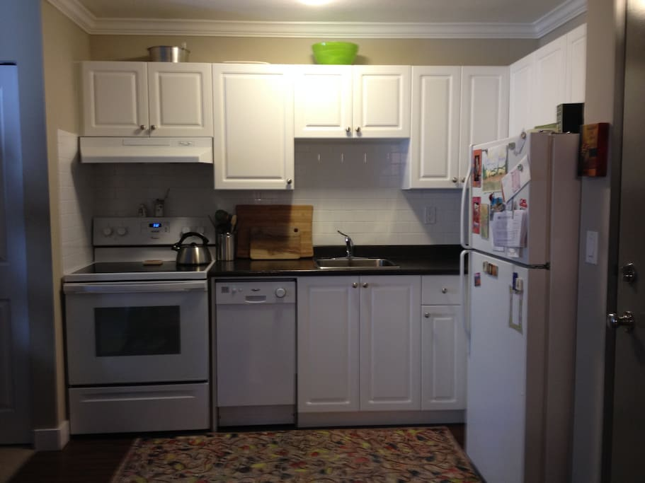 Kitchen with fridge, stove and dishwasher. Appliances only 1 yr old.