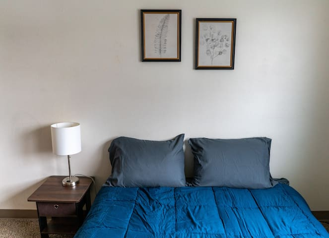 Cozy Studio Near NDSU (Apt 5)