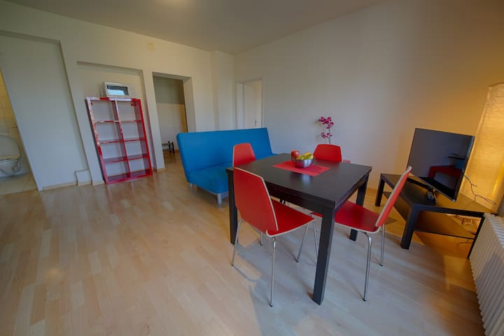 Stauffacher Apartment- Botteron
