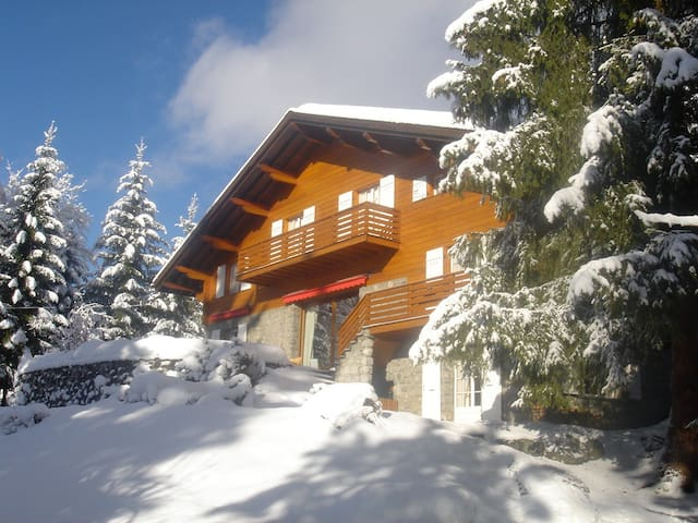Lovely Chalet Villars ski-golf-bike 6-16P flexrate