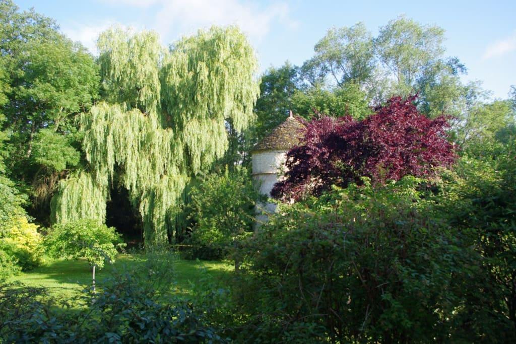Vue sur le jardin depuis le salon d'hôtes