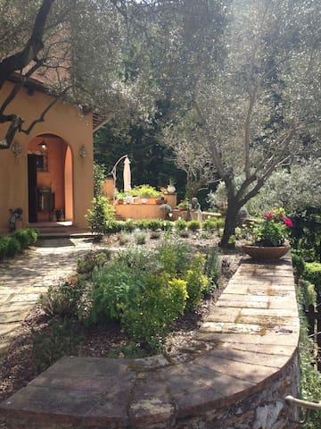 Entire farmhouse to rent near Lucca