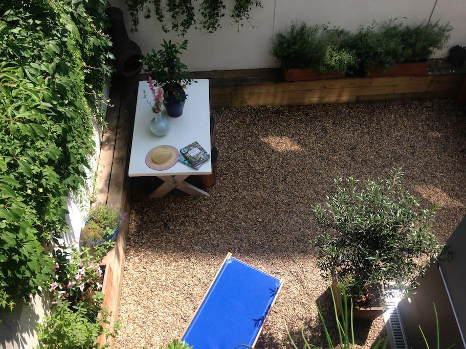 Garden in the morning