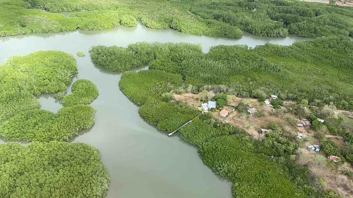 Villas Tempisque con canales navegables y aves