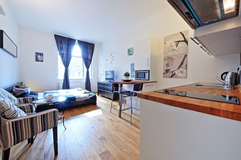 cozy and sunny studio