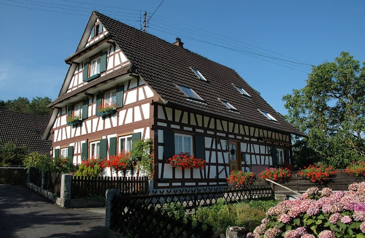 Ferienhof Waldhuber - Oberkirch - Appartement