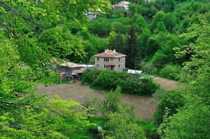 Gogovi Guest House,Gudevitsa vilage
