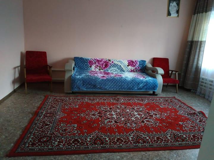 Гостевая комната с диван-кроватью (с завтраком)