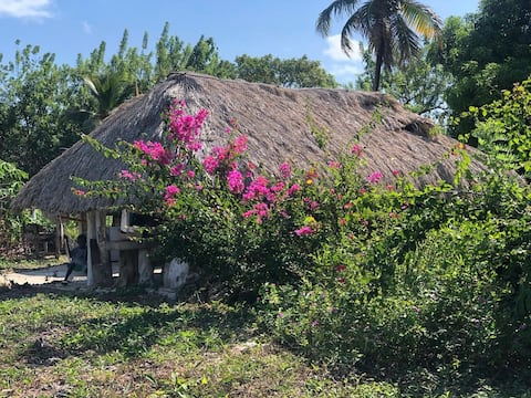 Casa de piedra , true island connection