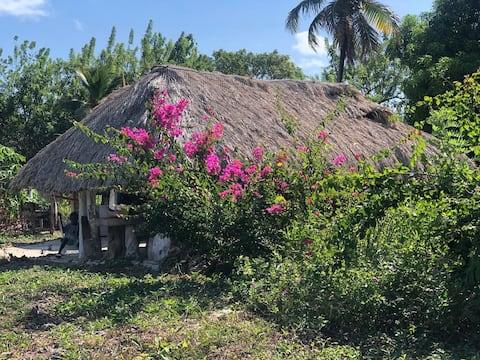Casa de piedra , true island connection