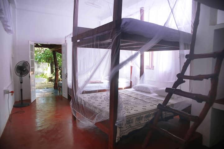 Mango hut