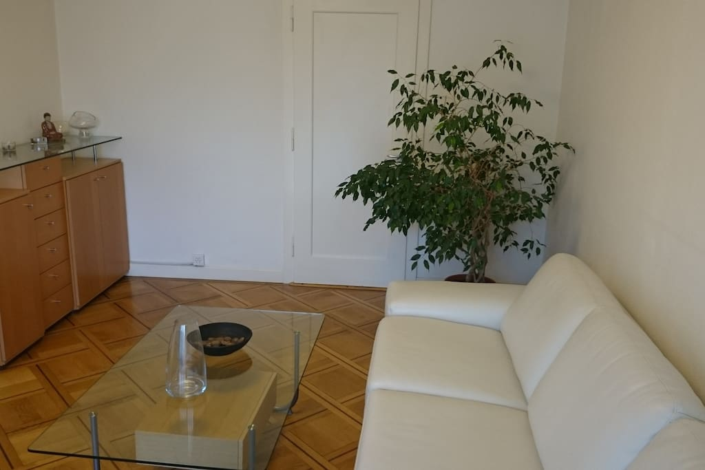 Living room with nice a leather sofa. door windows onto balcony. Nice, friend (and almost talkative) green Ficus