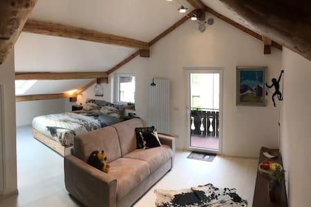A cozy loft in the Italian Dolomites region