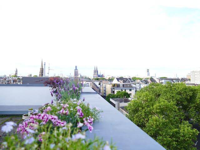 Wohnung im Herzen Kölns - Rooftop Barbarossaplatz