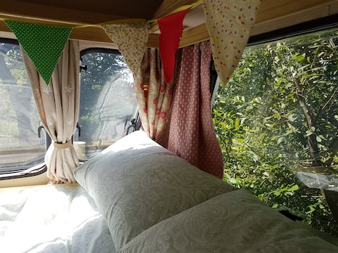 Willow Vintage Caravan at The Greenhouse Cabin