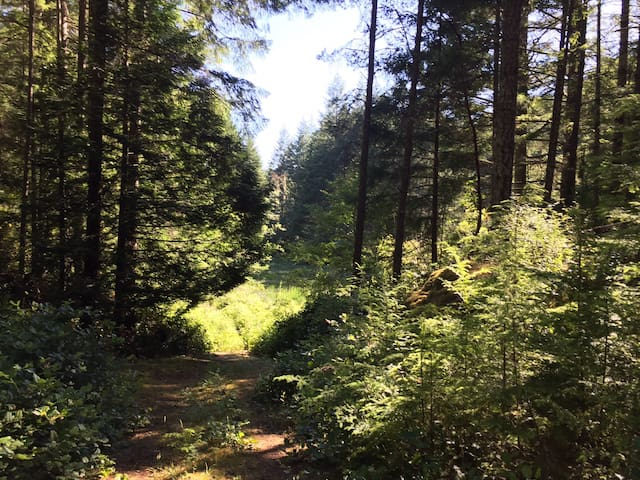 Nature lovers Private unserviced campsite 5 acres