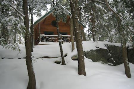 Stowe Rustic Log Cabin Adventure! - Stowe