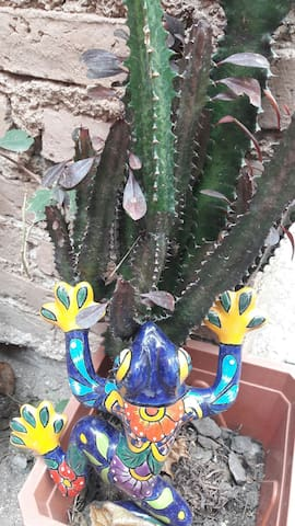 El Jardin Secreto, estudio privado, centrico - Guanajuato - Departamento