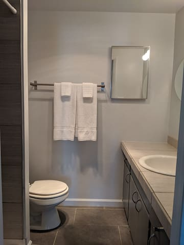 The bathroom includes a nice large vanity and a shower with new tile throughout.