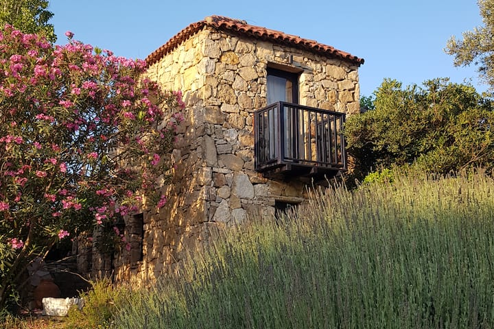Çeşme farm house - Privacy in a Vineyard Estate.