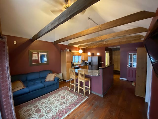 Open kitchen & living room with high ceilings & charming exposed rafters.  Couch and flatscreen tv powered by Roku (netflix, hulu, etc). Couch pulls out to accommodate extra guests if needed.