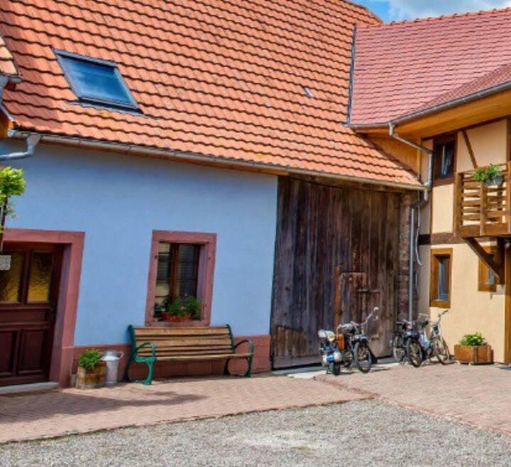 Les Gites du Fenil&Co Alsace (Petit Gite)