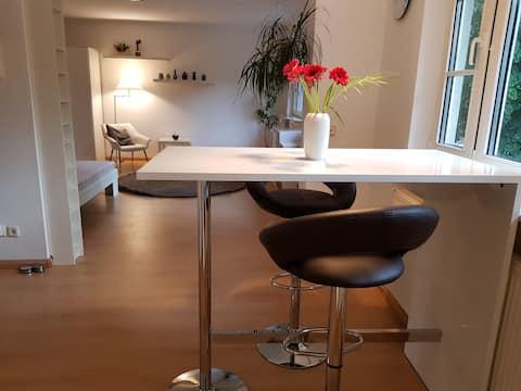 Helles gemütliches Studio Innenstadt (HomeOffice)