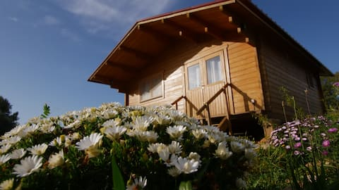 Casa do Mar  - Pure Nature Wooden Houses
