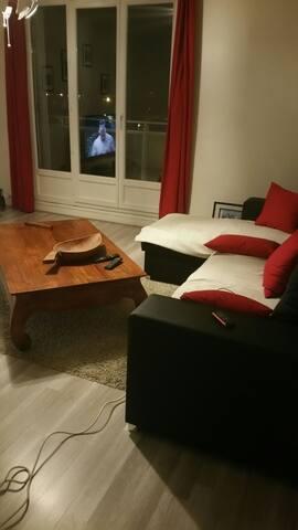 Appartement  soigné  et confortable - Saint-Martin-d'Hères - Huoneisto